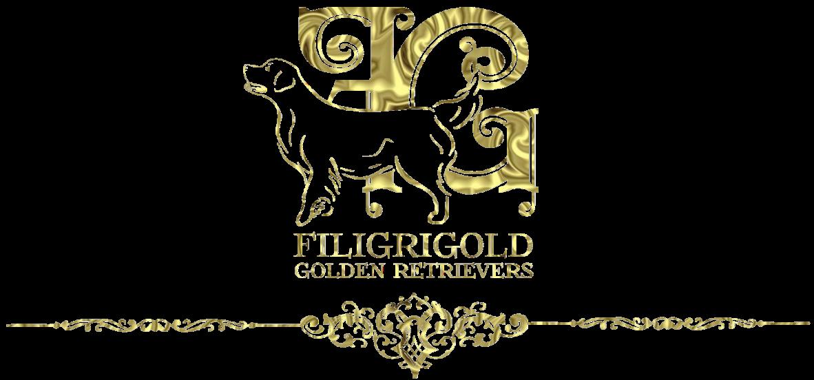 Filigrigold